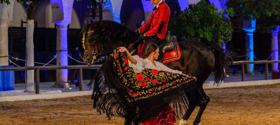 Córdoba Horses